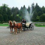 Giri in carrozza Cascina Menegon